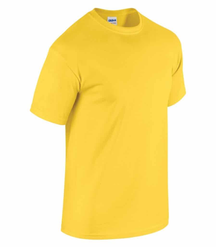 WTSM5000 - Daisy - WorkwearToronto.com - Men's T-Shirts With Custom Logo